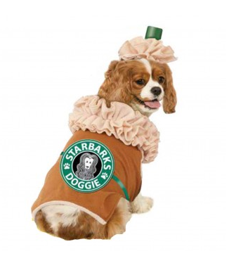 Is your pet dressing up for Halloween?